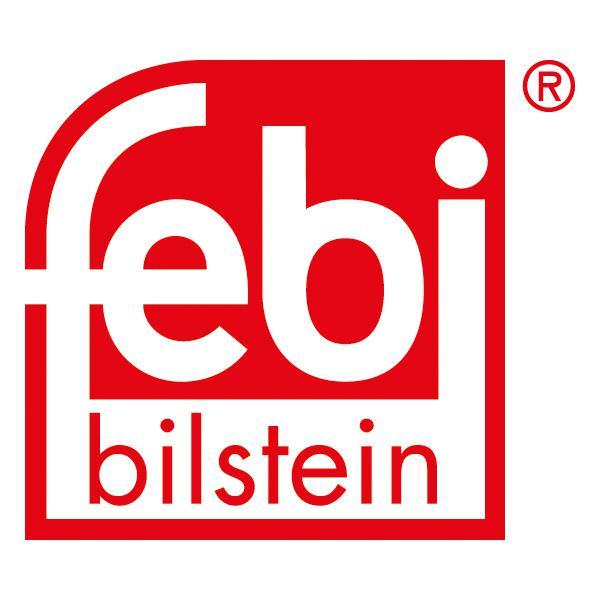 2x Febi Bilstein Bremsscheibe 43949 für RENAULT